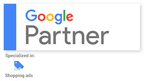 Google Partner AdWords